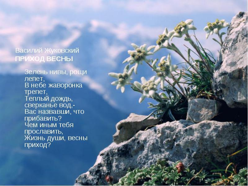 Приход весны. Василий Жуковский.