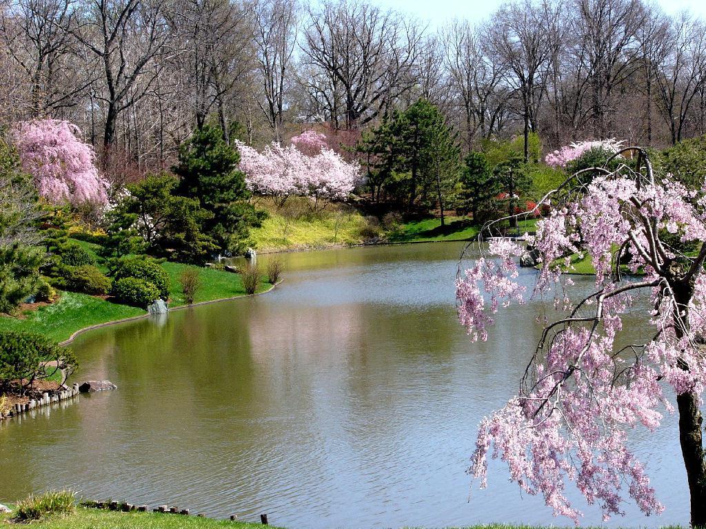 Стихотворение Весна. Андрей Белый