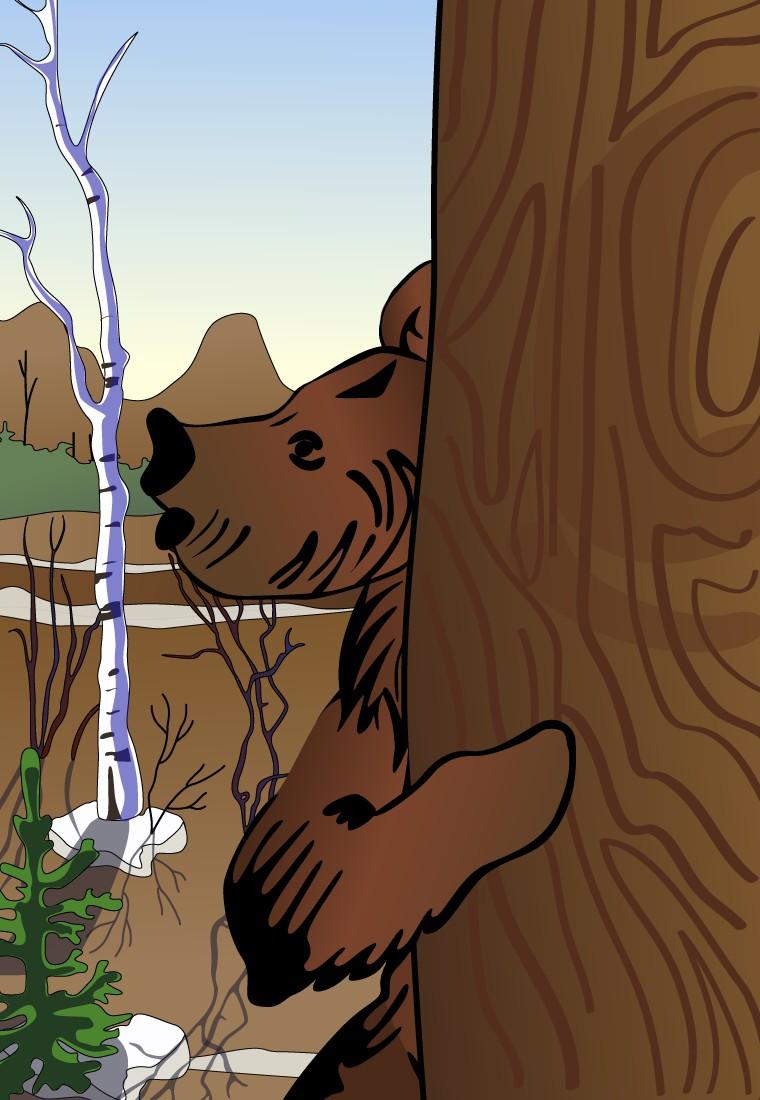 Рассказ Медведь. Пришвин М.