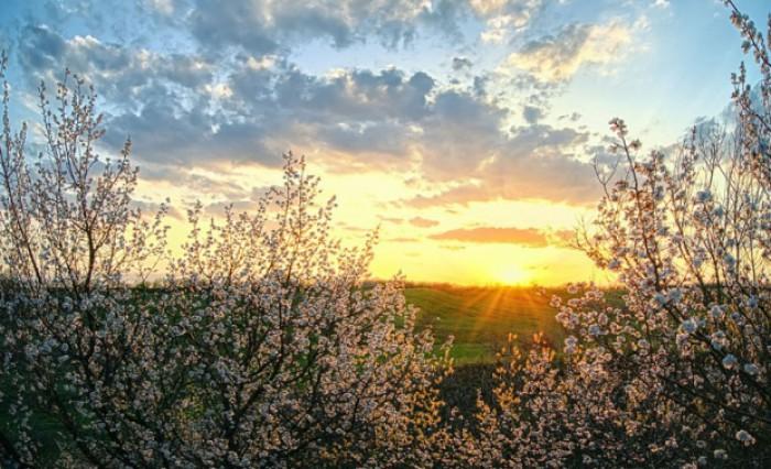 апрель скачать торрент - фото 9