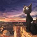 Тише мыши кот на крыше